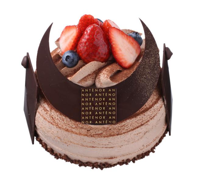 アンテノールかぶとケーキ